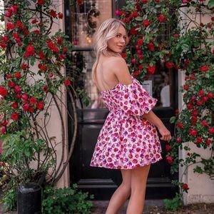 GORGEOUS ZARA NWT Printed Dress w Belt